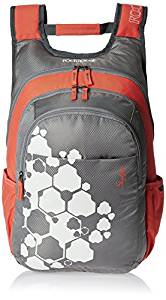 Skybags Blitz 26.5 Ltrs Grey Casual