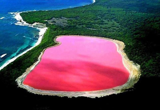 Pink Lake Hillier, Australia    mercytrip.com
