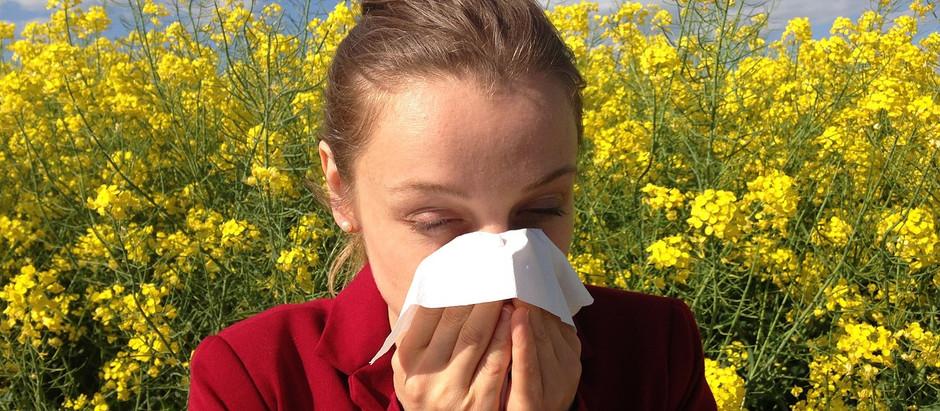 Chegada da primavera pode aumentar incidência de rinite alérgica