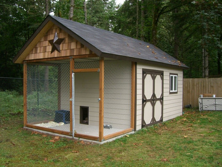 Ways to Utilize Your Portable Building for Your Pet