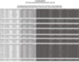 Recital In House Schedule-1.jpg
