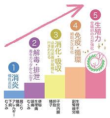 5stepの図.jpg