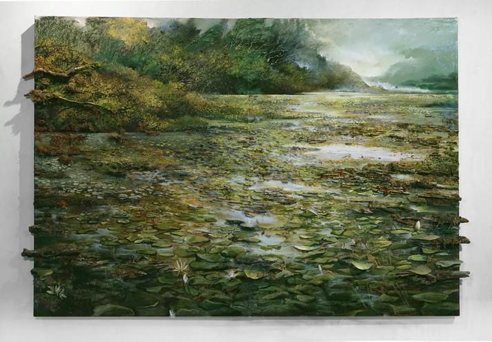 Denton-Wetlands.jpg