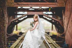 Molly Norris bridge