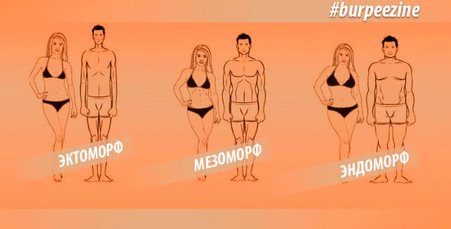 Три типа телосложения. Узнай кто ты?