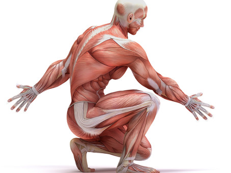 From Desk Life to Best Life: What is fascia?