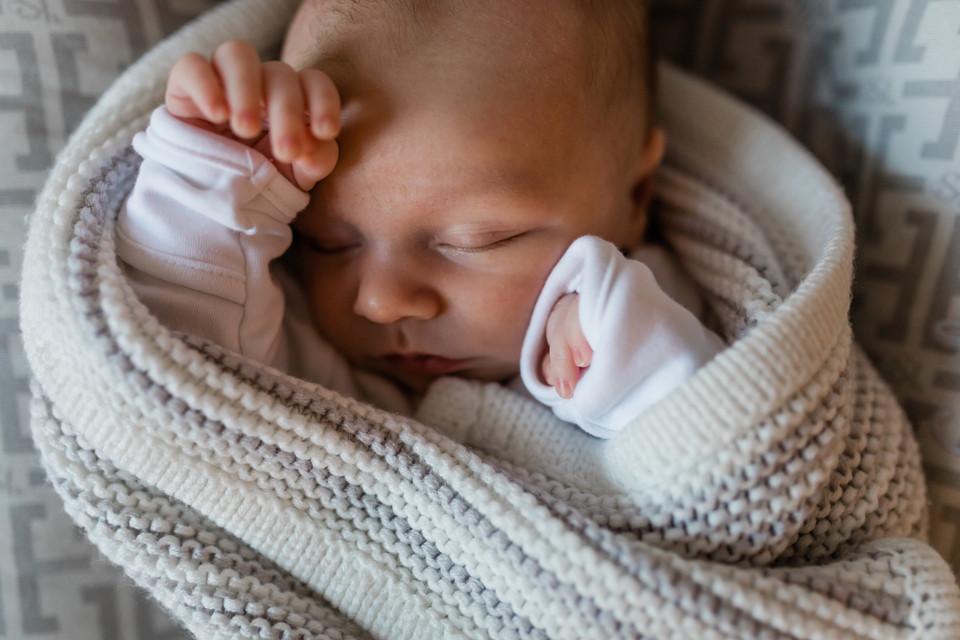 Newborn Baby Photos New Forest