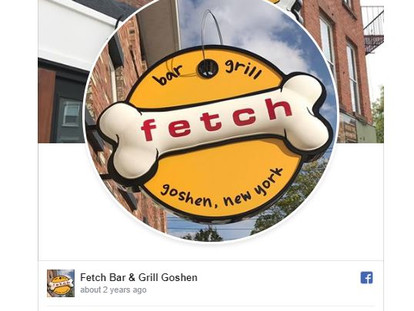 8 Dog-Friendly Bars In The Hudson Valley