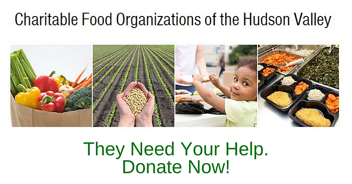 They Need Your Help. Donate Now! (1).png