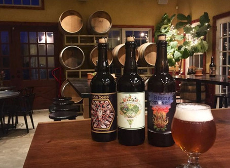 Arrowood Farms Brewery Opens Outpost in New Paltz