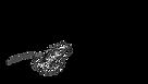 Laura Lane - Name Logo - Poppy.png