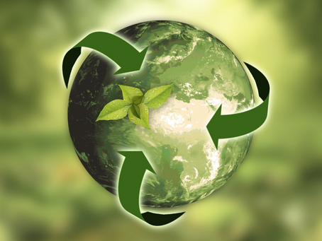 CKN and the Environment