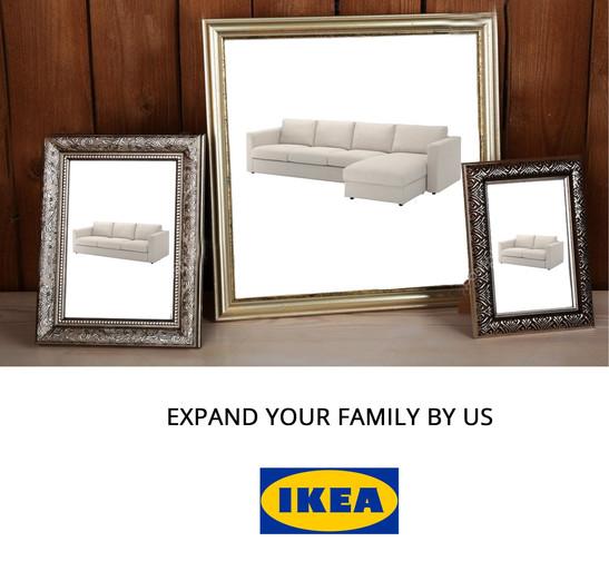 Ikea Family.jpg