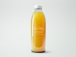 New Logo Juice Bottle Mockup.jpg