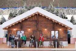Themed snow lodge.jpg