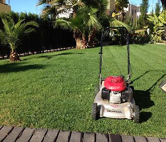 Foto_mantenimiento jardines(1).JPG