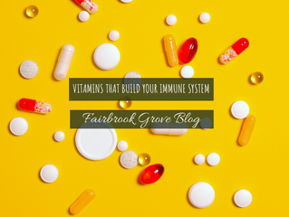 Vitamins That Build Your Immune System