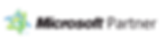 microsoft-partner-logo-transparent.png