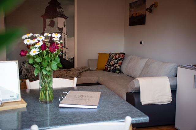 Nock Apartment Sofa