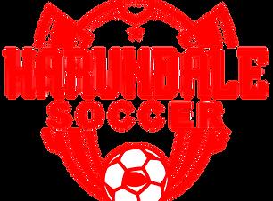 Harundale Youth Soccer Logo - Rec Level.