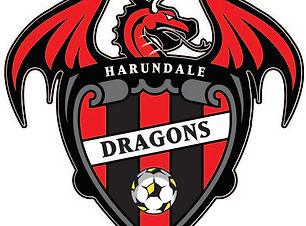 HES_Dragons.jpg