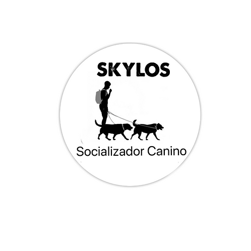 CURSO PARA SOCIALIZADOR CANINO CERTIFICADO