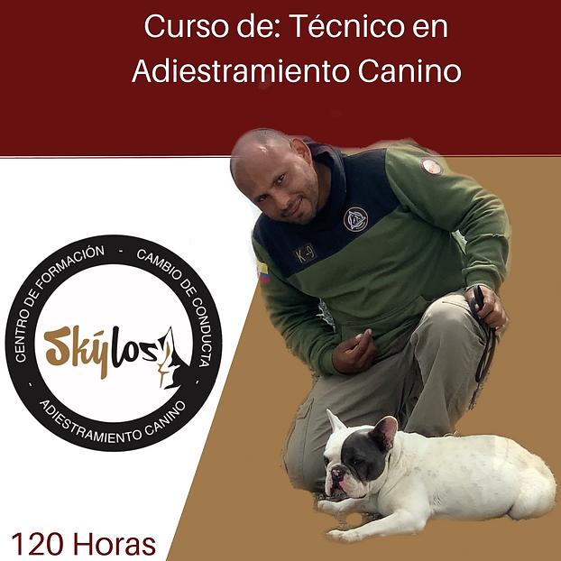 curso Tecnico en Adiest canino.png