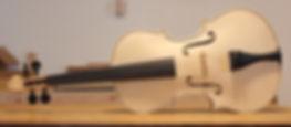 viola in the white
