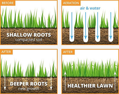 aeration for web page.JPG