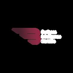 Logo-BIM-branca.png