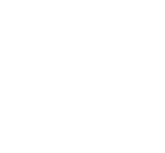 2 - WHITE SNOWFLAKE.png