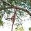 Thumbnail: Be Mindful Climbing Rope