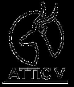 Attic V