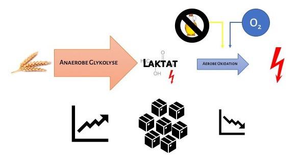 Energiebereitstellung_Szenario 2_Sprints