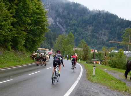Nicht nur Radfahrer wollen den Berg hinab… Rennbericht von der Alm