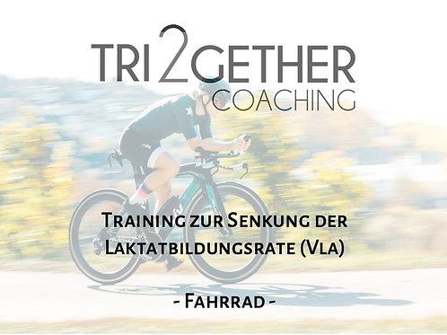 Trainingsplan Radfahren - Senkung der Laktatbildungsrate