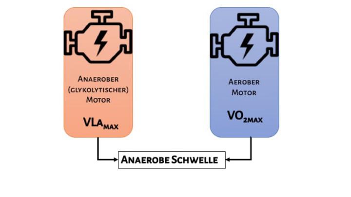 Motoren der Energiebereitstellung