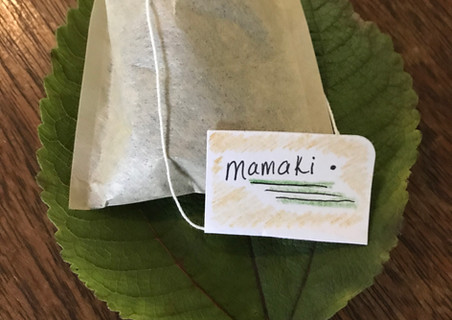 handmade mamaki tea bags; a native Hawaiian plant in the nettle family