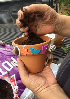 custom pots for flowers
