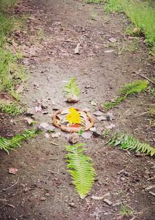 a nature mandala created by a family in Ka'u