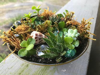mini zen garden 2.jpg
