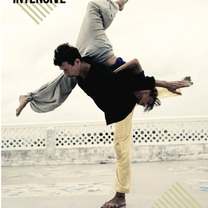 Axis Syllabus Intensive Stage di Contact Improvisation e Percezione Interna a cura di Frey Faust e F