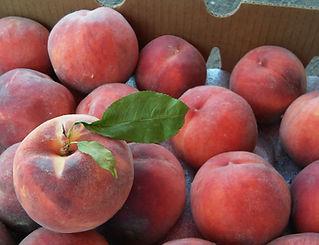 peach w leaf.jpg