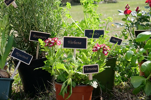 Plant markers - eco friendly