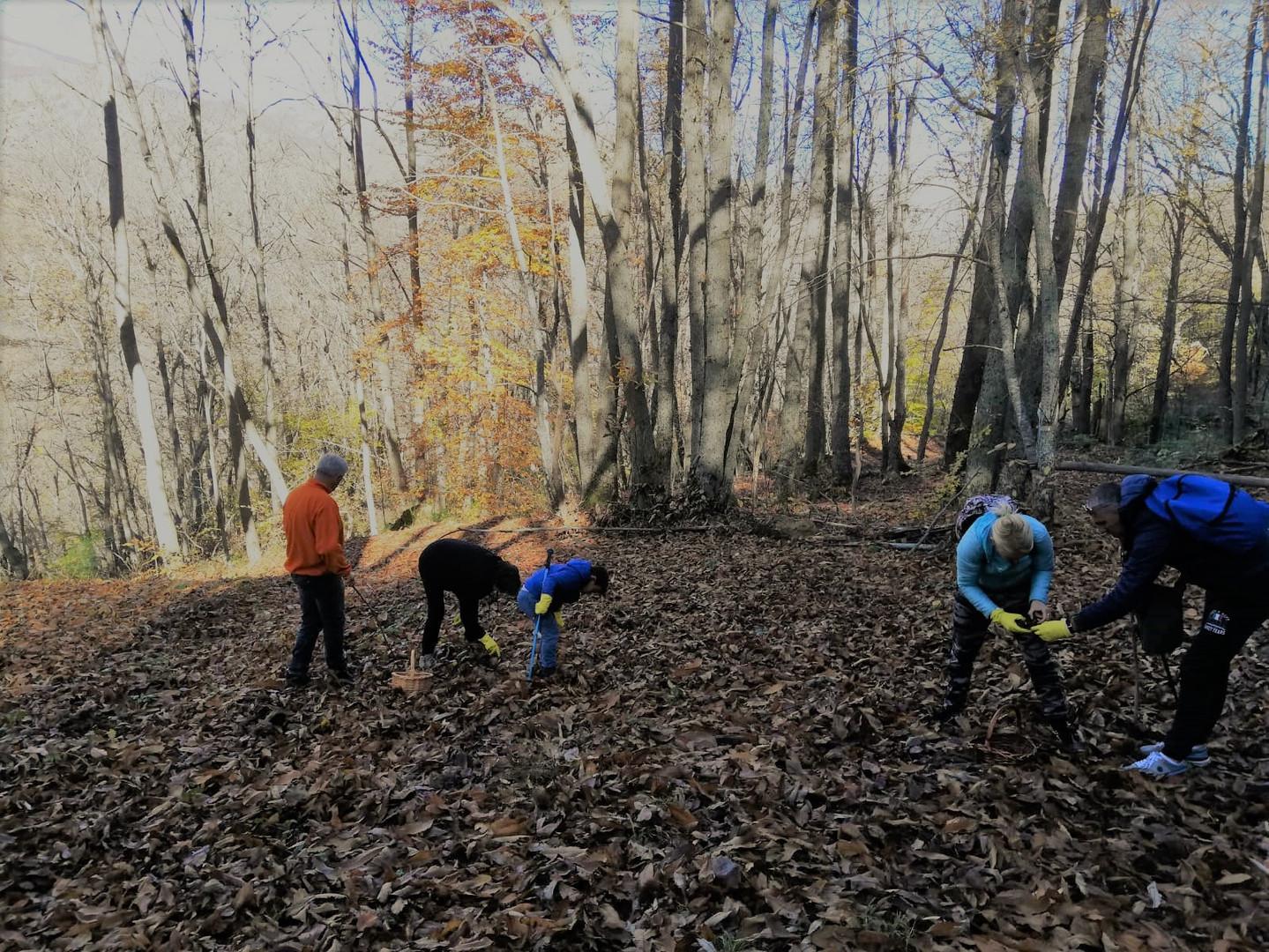 escursione 10-11 novembre 2018 - (2).jpg