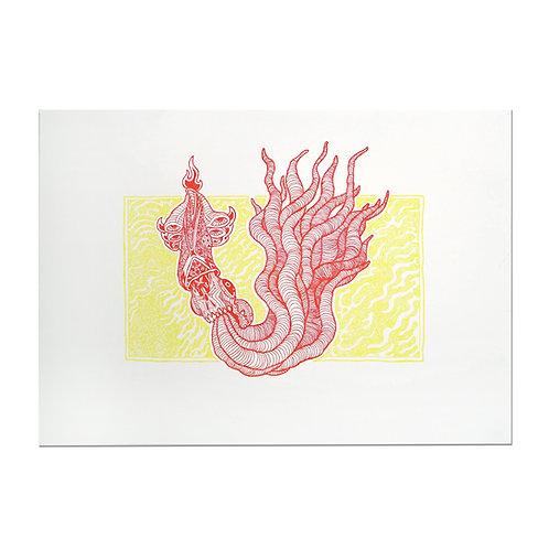 KM Squid Print Xuan Quyen