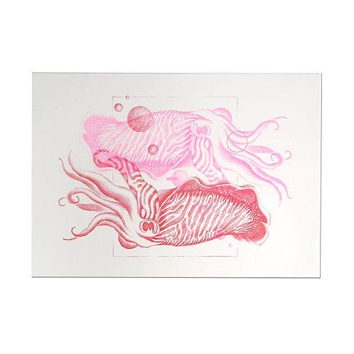 KM Squid Print Vuon