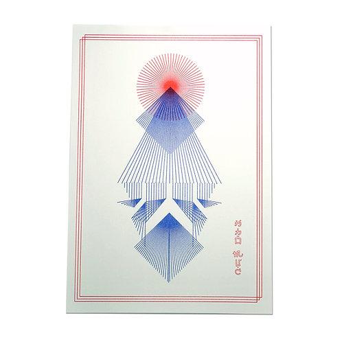 KM Squid Print Carot