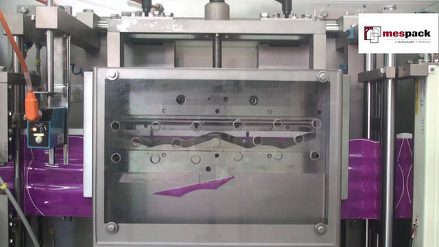 Have you ever wondered how shapes are created online in a form-fill-seal machine?