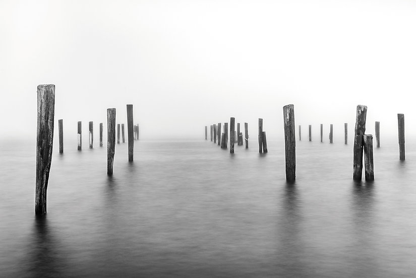 """""""The Ghost Pilings"""""""
